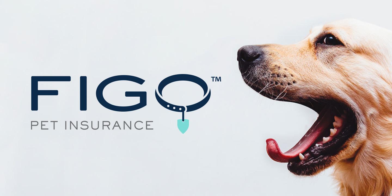 FIGO Pet Insurance Multimedia