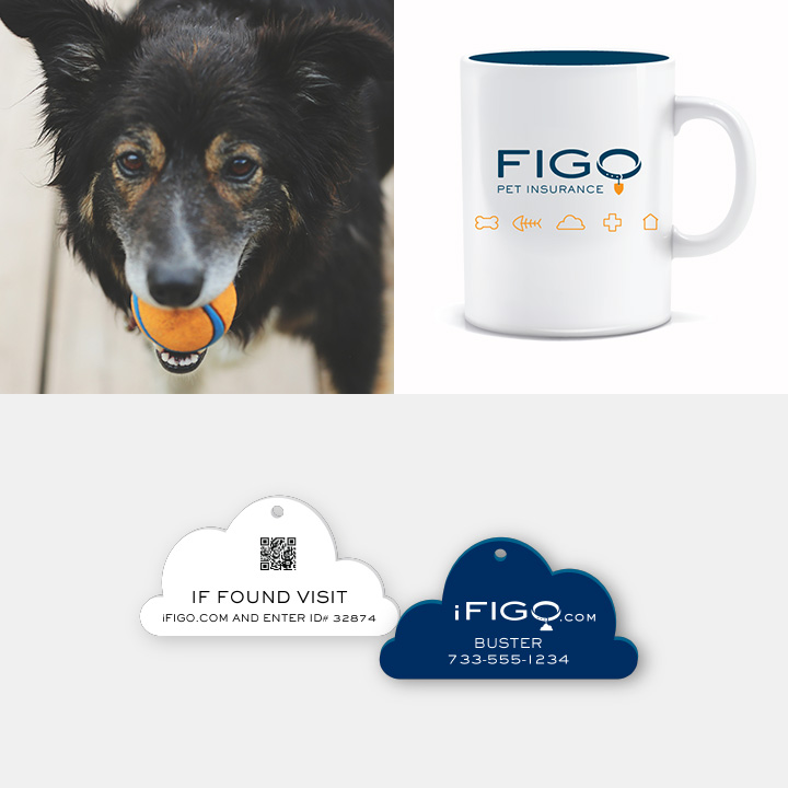 FIGO Pet Insurance Photography and Collateral Items